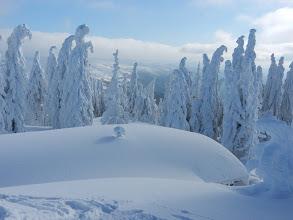 Photo: 11 Rachelgipfel: Bergwachthütte - unter einer dicken Schneedecke