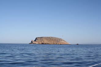 Photo: Prince Island