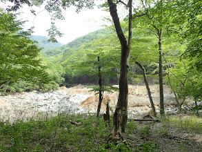 愛知川に合流