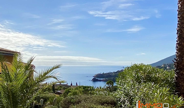 Maison avec piscine et terrasse Theoule-sur-mer