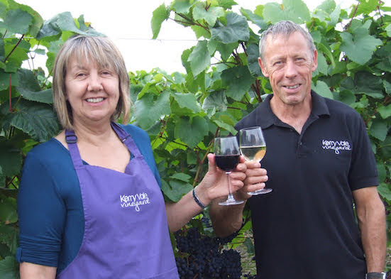 Local Vineyard set for bumper vintage!