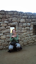 Photo: Intérieur du Machu Picchu (Pérou)