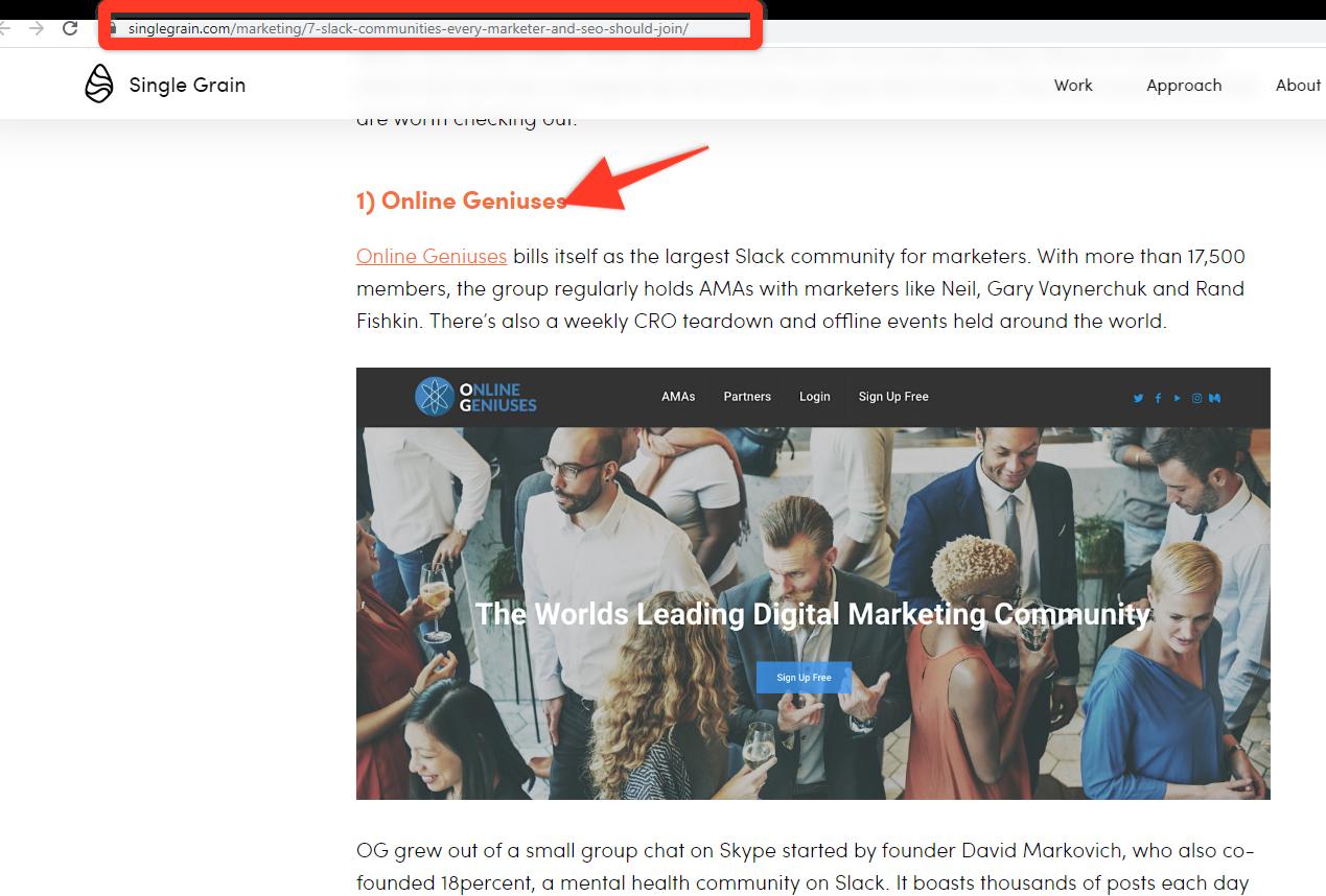 "Screenshot of Single Grain Blog Post Mentioning ""Online Geniuses""."