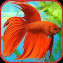 Аквариумные рыбки Энциклопедия icon