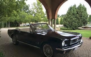 Ford Mustang Rent Gauteng