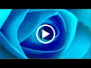 Video: A. Vivaldi  Geme l'onda che parte [cantata] for soprano   b.c. (RV 657) - Part II -