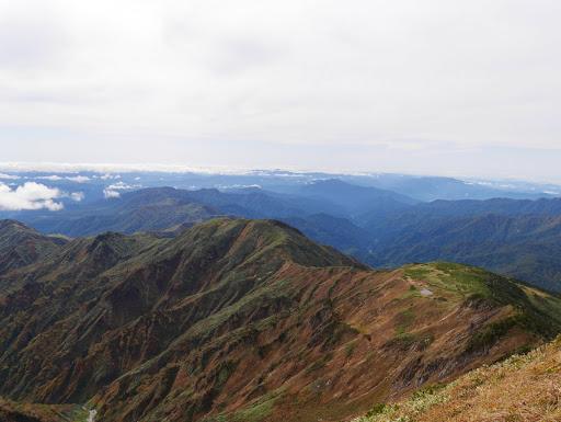 別山平・三ノ峰(奥に荒島岳や銀杏峰)