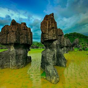 Musim Tanam telah tiba Ramang-Ramang, Maros South of Sulawesi by Rifa PhotoArt - Novices Only Landscapes