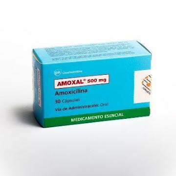 Amoxal 500Mg Cápsulas   Caja x30Cap GSK Amoxicilina