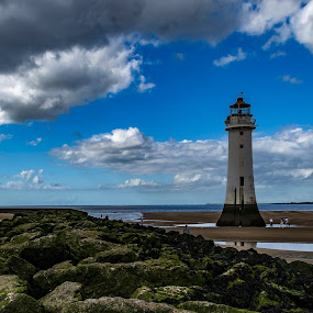Lighthouse  by Alan Brelsford - Landscapes Beaches