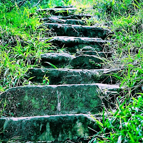 stones steps by Gerhard Conradie - Nature Up Close Rock & Stone ( steps )