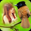 Bird Photo Frames icon