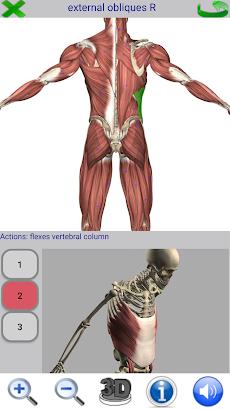Visual Anatomy 2のおすすめ画像4