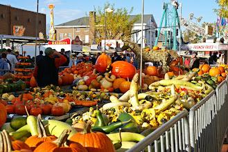 Photo: Pumpkins of every kind