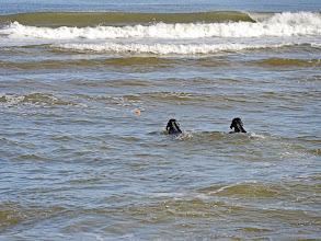 Photo: wir können schwimmen, juchhuuuuu