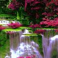 Waterfall Flowers LWP apk