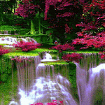 Waterfall Flowers LWP Icon