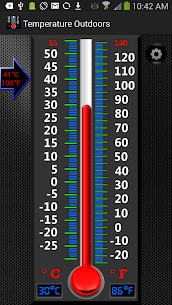 Real Mercury Thermometer 6