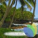 Hawaiian Waves Video & Alarm icon