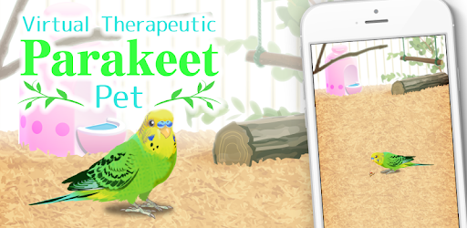 Parakeet Pet - Apps on Google Play