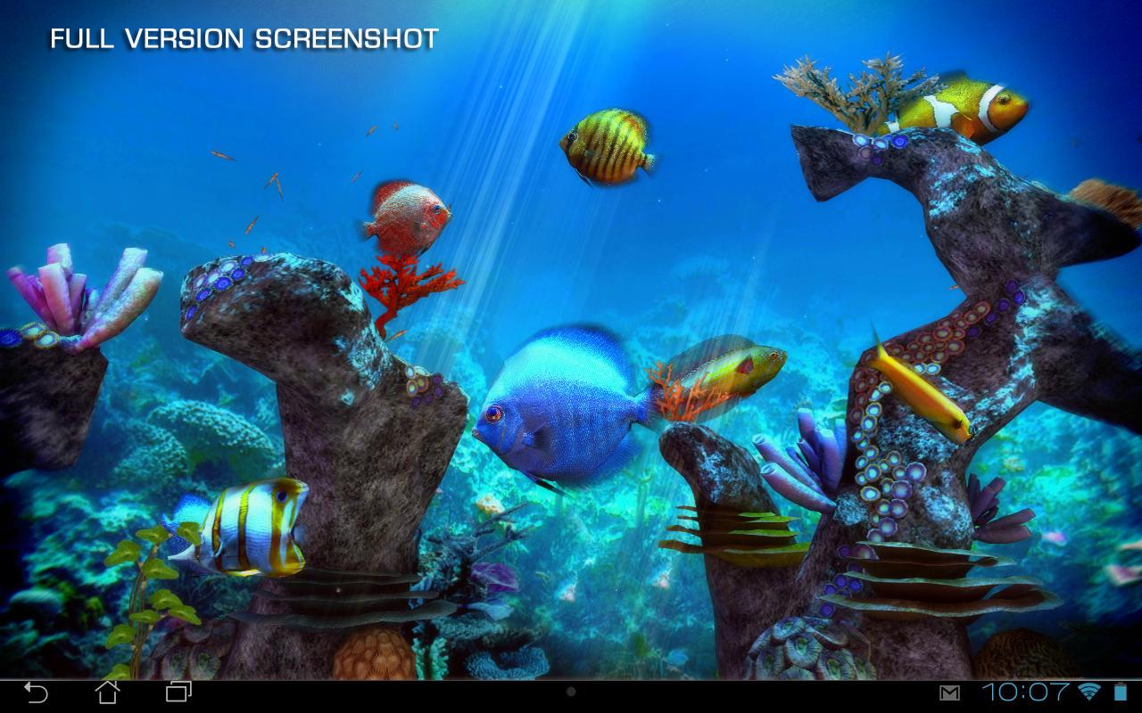 Clownfish Aquarium 3d Free Android Apps On Google Play