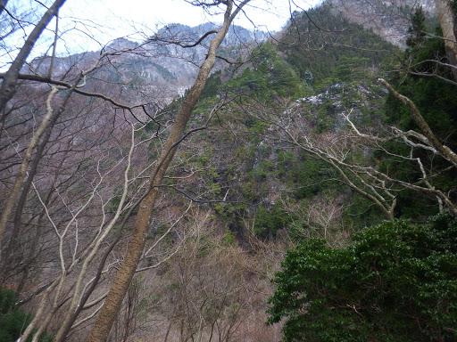 展望地からの眺め(中央に滝)