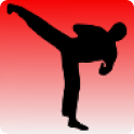 Taekwondo training icon