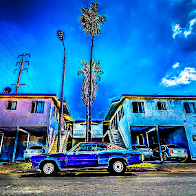 Malibu by Francis Hesse - Transportation Automobiles ( classic cars, muscle car, hdr, cars, california, malibu, d7000, los angeles, chevy )