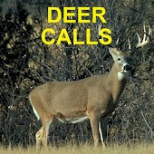Deer Calls for Deer Hunting