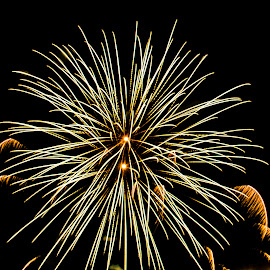 by Mohsin Raza - Abstract Fire & Fireworks (  )