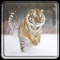 Tiger Live Wallpaper Free icon