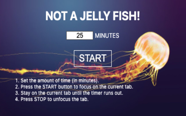 Not a Jelly Fish!