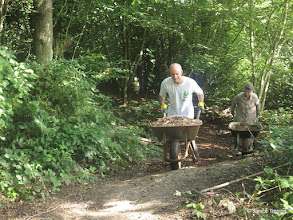 Photo: Collecting wood chippings for spreading on a muddy path during a conservation event