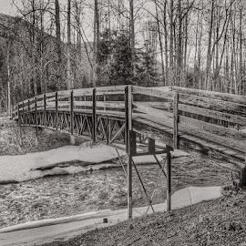 Across Resurrection River by Patricia Phillips - Buildings & Architecture Bridges & Suspended Structures ( alaska hope bridge resurrection-river )