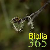 365 Biblia