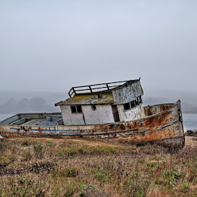 Tomales Bay by Arvind Mallya - Landscapes Waterscapes