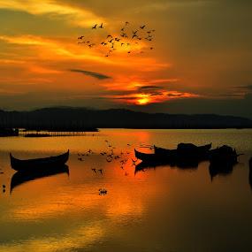 by Tamin Ibrahim - Landscapes Sunsets & Sunrises