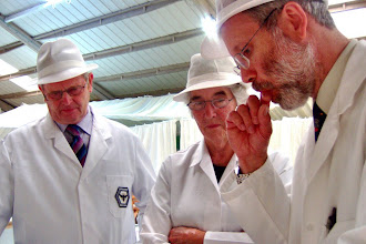 Photo: Cecil McMullen INIB Judge, Vivian Brown Senior British Judge, Ivor Flatman, INIB Judge discussing a jar of light honey.