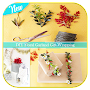 DIY Floral Garland Gift-Wrapping APK icon