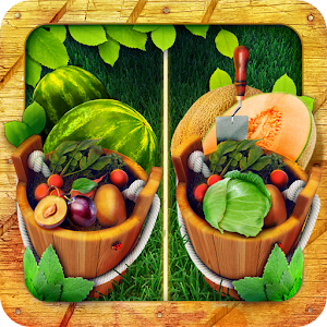 Find the Difference – Gardens for PC and MAC