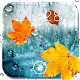 Rain Drops Live Wallpaper APK