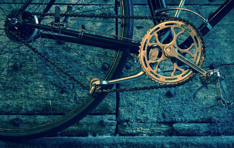 Geometrie a pedali di Barbara Surimi