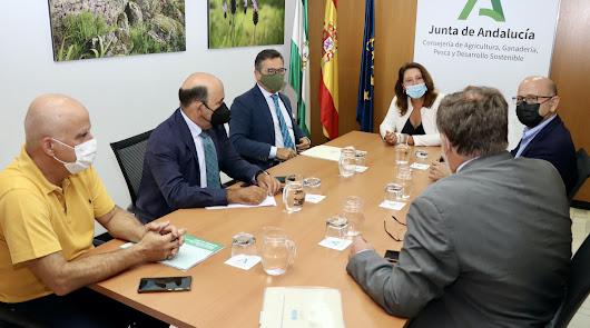 Carmen Crespo se reúne con el Colegio de Ingenieros Agrónomos de Andalucía