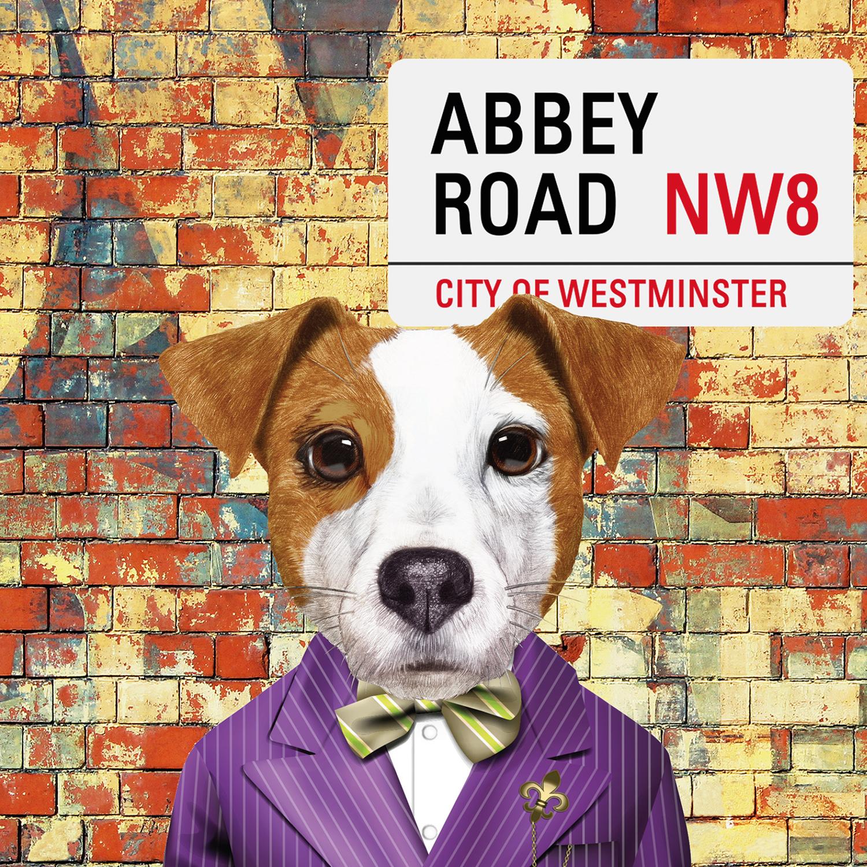 Abbey Road Paul