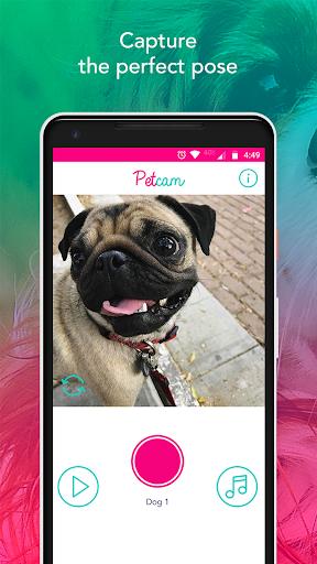 Petcam - Pet Camera hack tool
