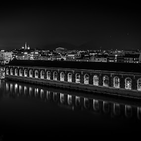 Geneva Lights by Carlos Kiroga - Black & White Buildings & Architecture ( mirror, urban exploration, shadow, light, city, urban landscapes, cityscape, black and white, bridge )
