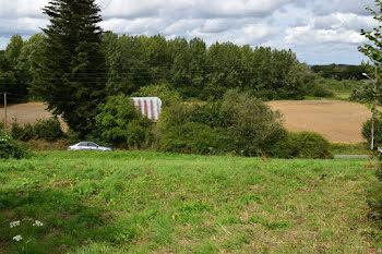 terrain à Saint-Mayeux (22)