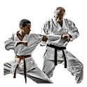 Karate Guide icon