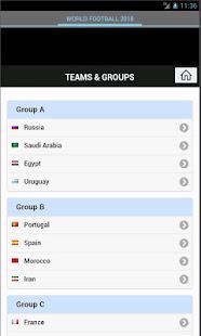 World Football Cup 2018 - náhled