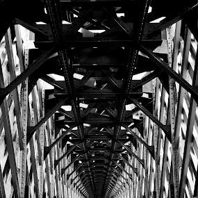 Cirahong Bridge by Bastian AS - Buildings & Architecture Bridges & Suspended Structures ( interior, building, cirahong bridge, old bridge, black and white, ciamis, west java, monotone, steel interior, tasikmalaya )